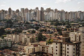 מלונות בלונדרינה, ברזיל