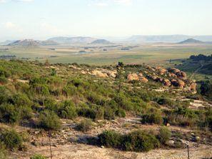 מלונות בוריהייד, דרום אפריקה