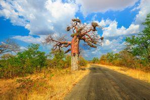 מלונות במקאדו, דרום אפריקה